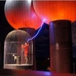 Faraday Kafesi Nedir?